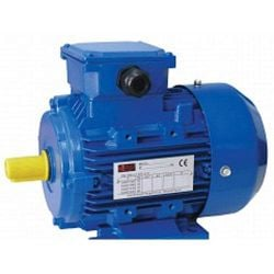 Трифазен електрически двигател ELECTROMASH MS-100 - 2